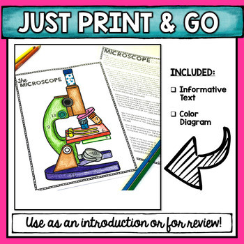 Color the Microscope Parts Worksheet