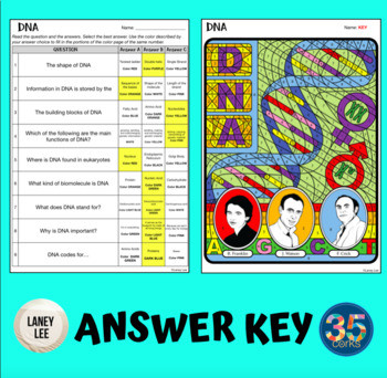 Dna Coloring Worksheet Answers