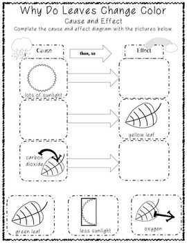 Fall Science FREEBIE Why Do Leaves Change Color