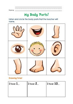 Body Parts Kids Worksheets & Teaching Resources
