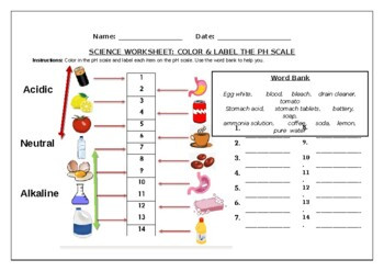 Ph Scale Activity Worksheets